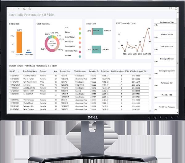 DSRIP ED VISITS Dell_Monitor_2017_TB-1